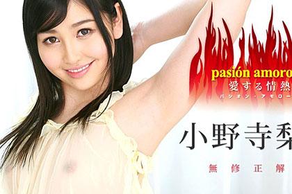 パシオン・アモローサ 〜愛する情熱 5〜