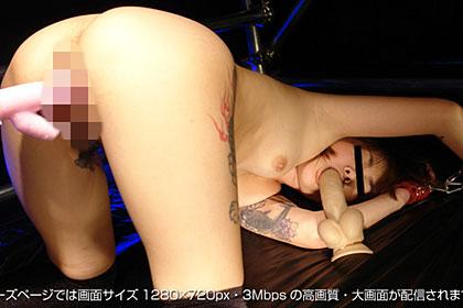 【1/2】ストーカー魔が再びSMルームへと招待する 島谷綾 22歳