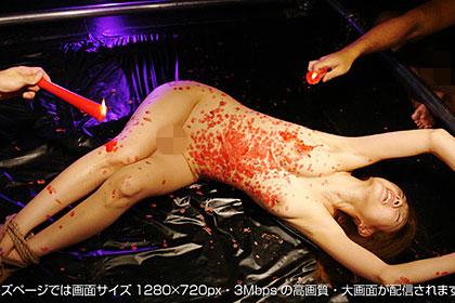 【2/2】超小柄美人この調教に耐えられる!それとも…!菖蒲千尋 29歳