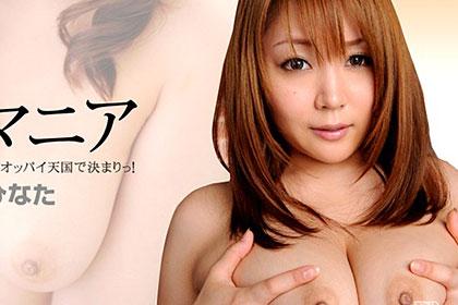 巨乳マニア No.3